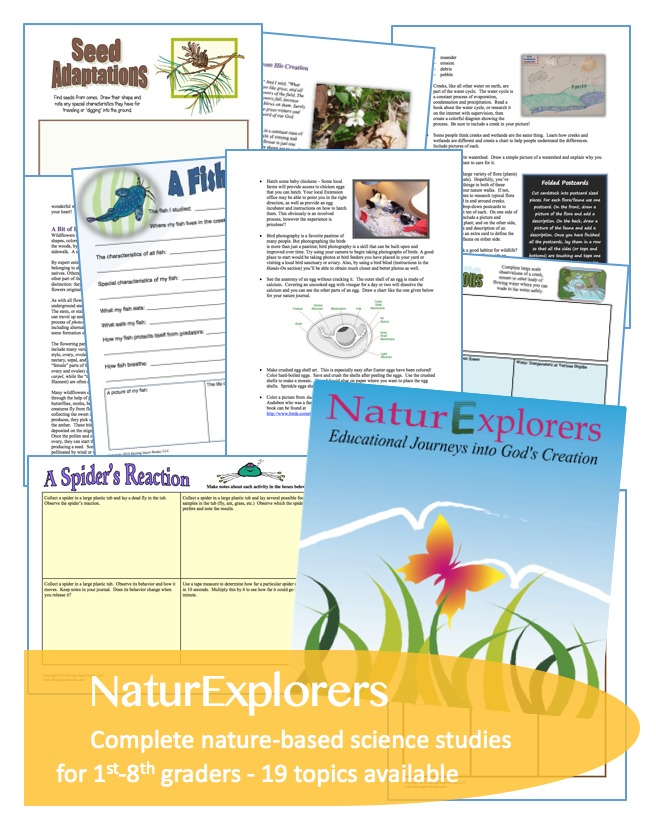 NaturExplorers Unit Studies