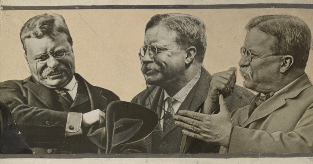 Quotes from Teddy Roosevelt